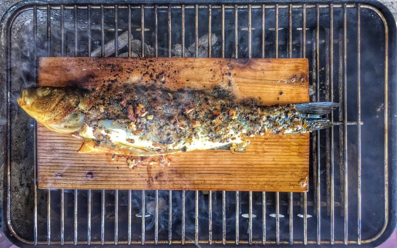 Fish in plank